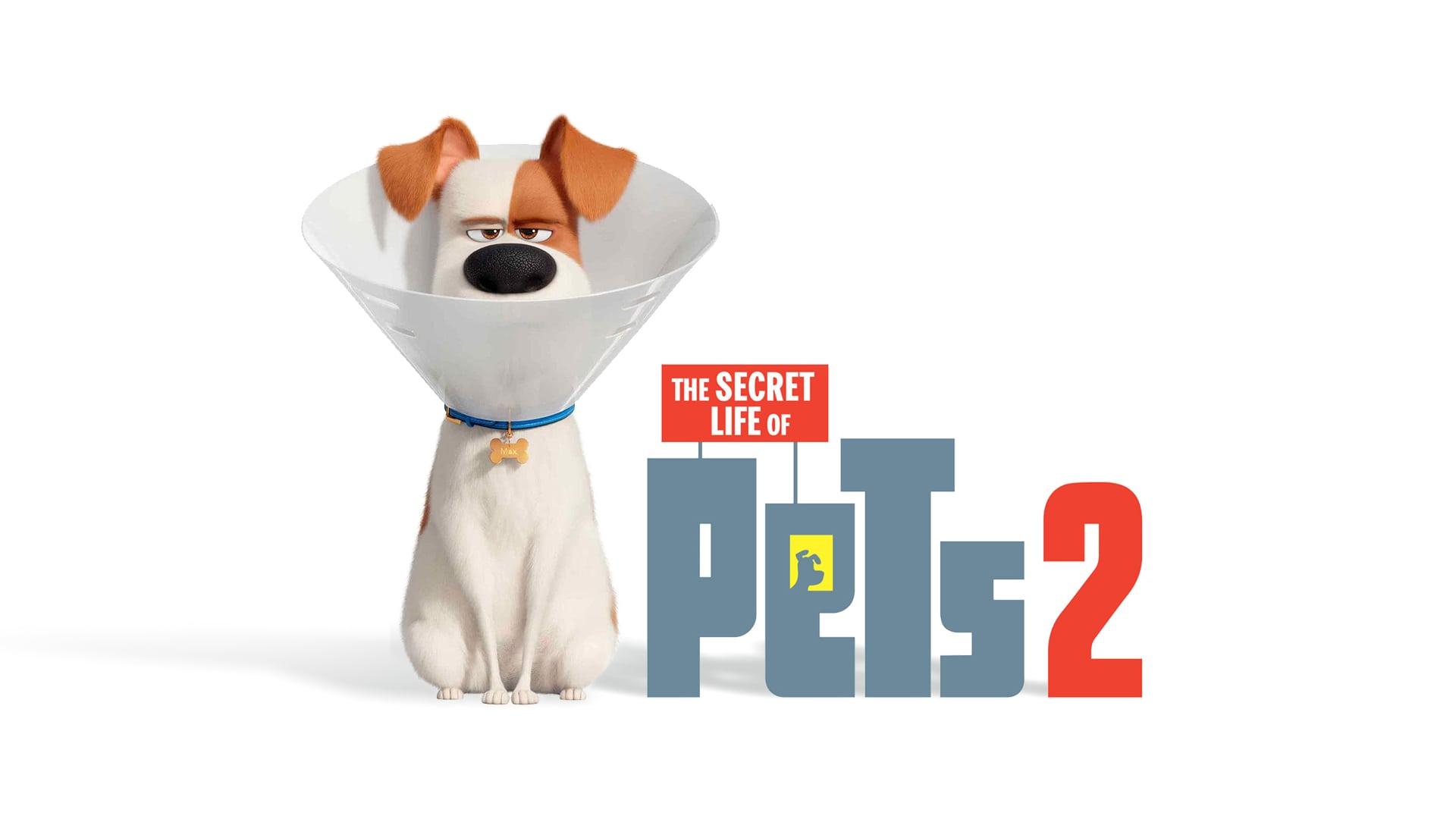انیمیشن زندگی مخفی حیوانات خانگی 2 یکی از بهترین انیمیشن های سال 2019